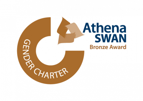 Advance HE Membership logo Standalone AS Bronze Colour lrg